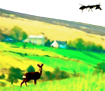 Deer-Hunting-with-Drones