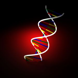 Blog: DNA Profiling: An Invaluable Tool or a 4th Amendment Violation?