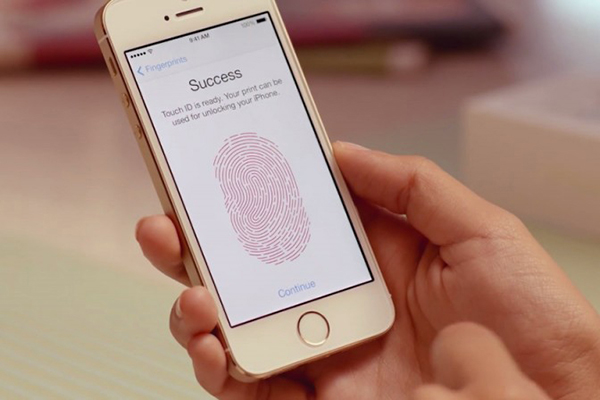 Blog: More On Apple's Touch ID – Getting Under Our Skin and Around the Law
